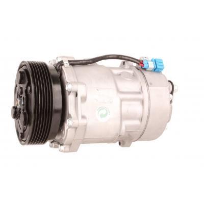 Klimakompressor Ford Mustang, BR3319D629BF, BR3Z19703b, BR3319497BD, DKS17DS, XM2H19D629BA, 1107170,