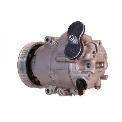 Klimakompressor Chevorlet, 1618063, 1618415, 1140865, 0608DPSS, 1618424